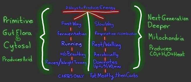 2-ways-to-produce-energy