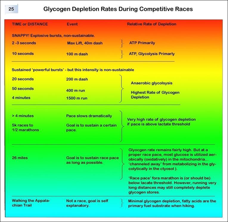 Glycogen-depletion-rates
