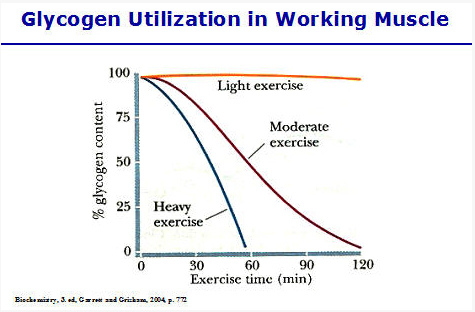 http://physicalrules.com/wp-content/uploads/2016/03/Glycogen-depletion.jpg