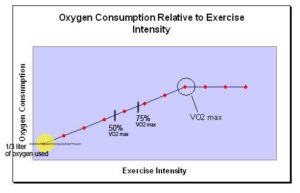 vo2-max-partitioned