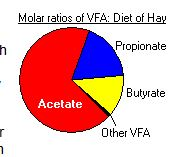pie chart ferment products